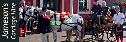 Jameson's Wedding Carriage Hire - Wedding and Event Carriage Hire