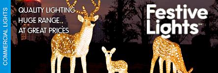 Festive Lights - Illuminate Your Christmas Event
