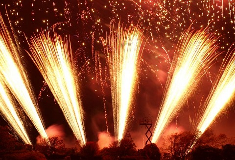 Link to the Skyburst the Firework Co website