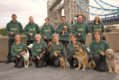 Link to the Essex Dog Display Team website