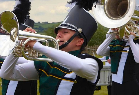 Link to the Revolution Show Corps website