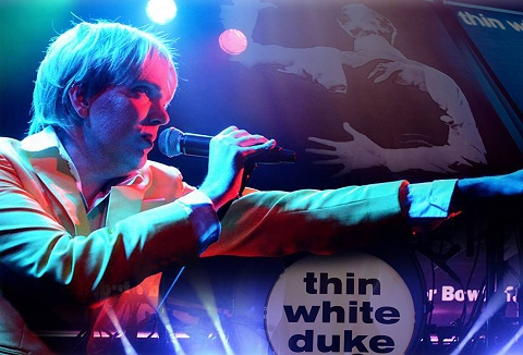 Link to the The Thin White Duke website