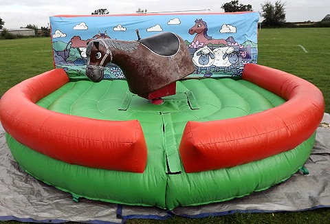 Link to the R & R Entertainment Inflatables website