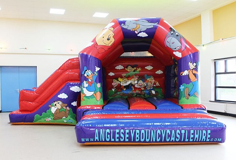 Link to the Anglesey Bouncy Castle Hire website