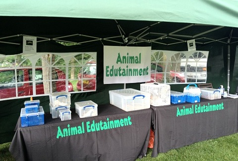 Link to the Animal Edutainment website
