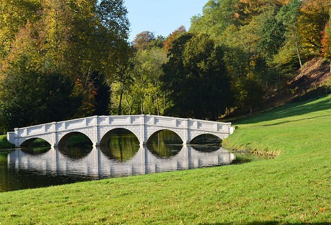 Link to the Painshill Park website