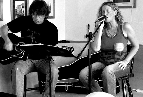 Link to the Swansong Acoustic website